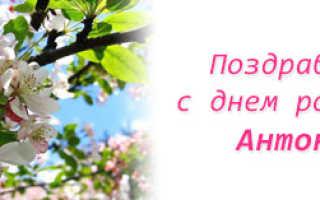 Стихи поздравления с днем рождения Антонине