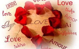 Стихи любимой Ангелине